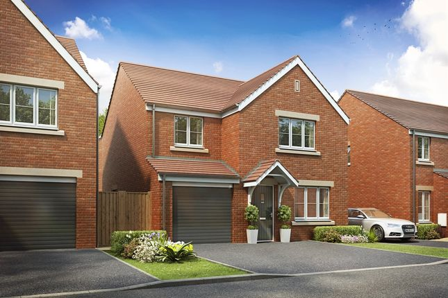 "Thumbnail Detached house for sale in ""The Roseberry "" at Brickburn Close, Hampton Centre, Peterborough"