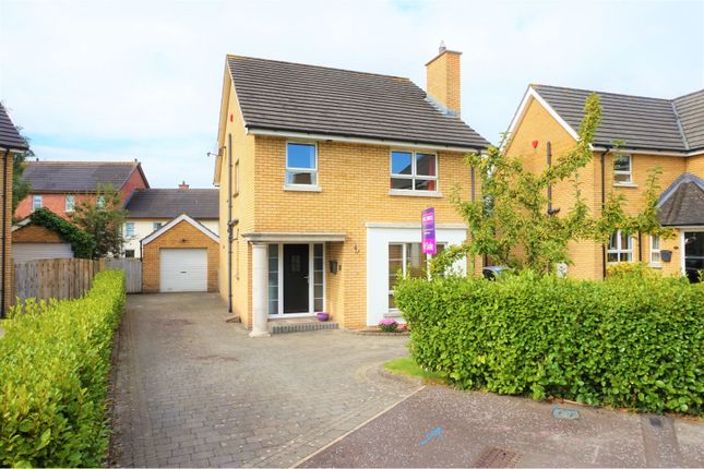 Thumbnail Detached house for sale in Hanover Chase, Bangor