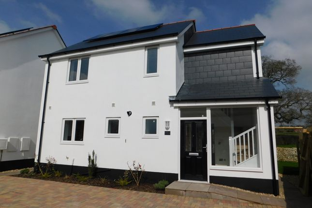 Thumbnail Detached house for sale in Whitford Road, Musbury, Axminster
