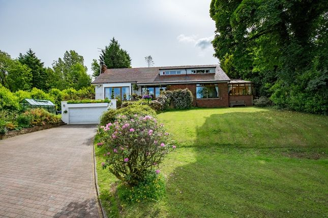Thumbnail Detached bungalow for sale in Oaklea, Titwood Road, Newton Mearns
