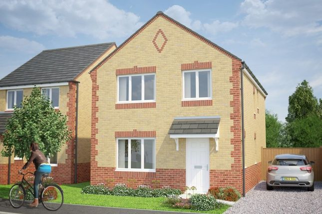 Thumbnail Detached house for sale in Jipdane, Hull