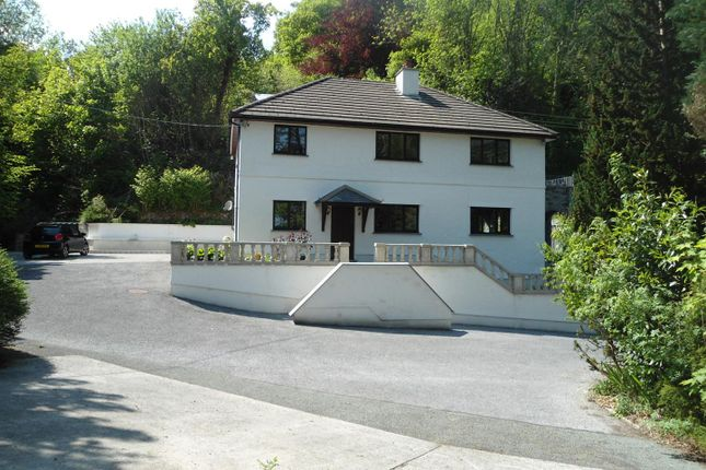 Thumbnail Property for sale in Talley, Llandeilo