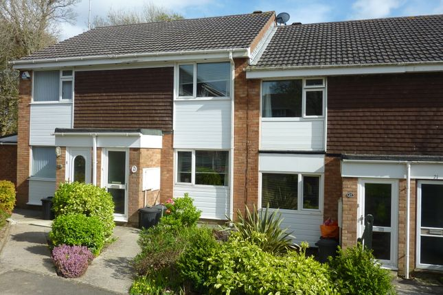 Thumbnail Terraced house to rent in Westlake Close, Torpoint