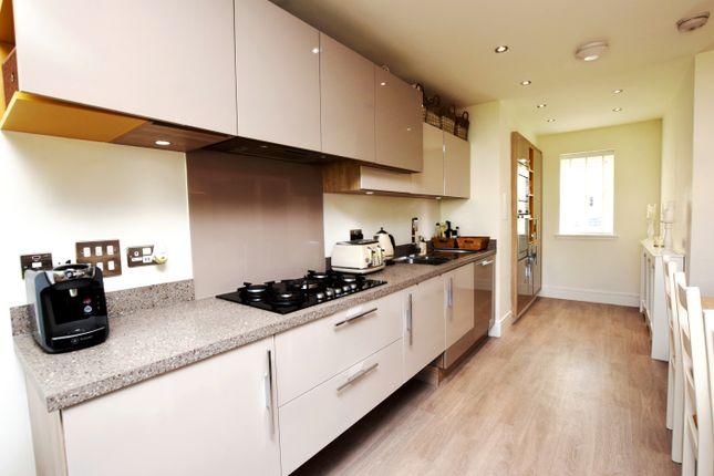 Kitchen Area of Adam Crescent, Dundee DD3