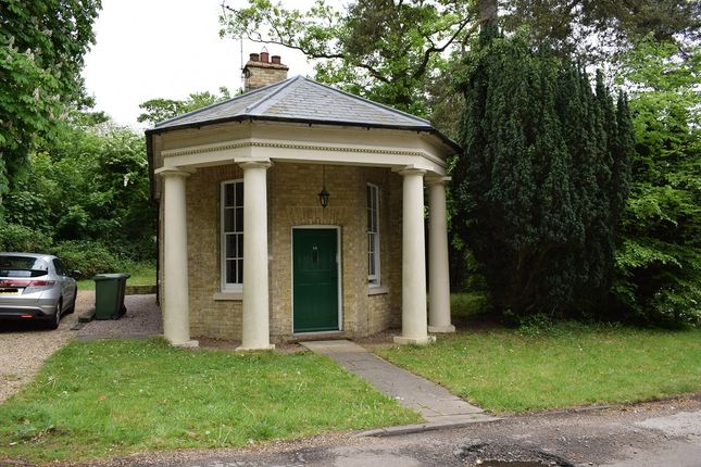 Thumbnail Detached house to rent in Ermine Street South, Papworth Everard, Cambridge