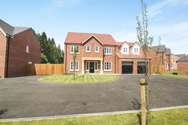 Thumbnail Detached house for sale in Snowdrop Avenue, Wynyard, Billingham