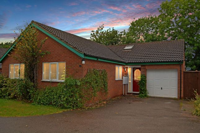 Thumbnail Bungalow for sale in Shanklin Gardens, Knighton, Leicester