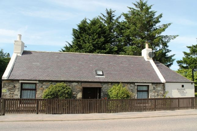Thumbnail Detached bungalow for sale in Blackhall Cottage, Drummuir