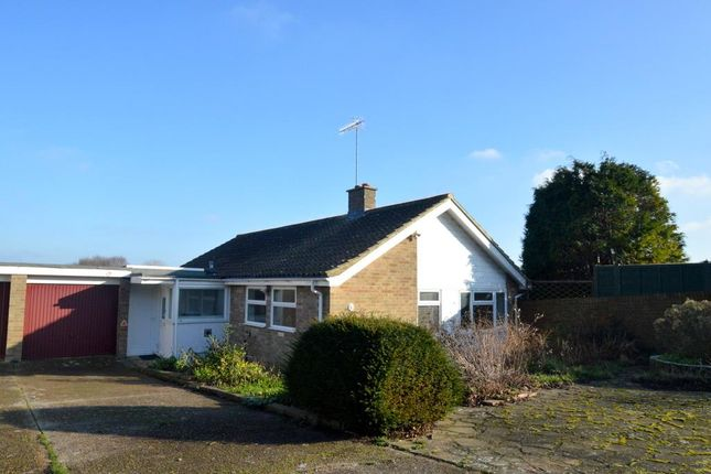 Thumbnail Detached bungalow for sale in Pococks Road, Eastbourne