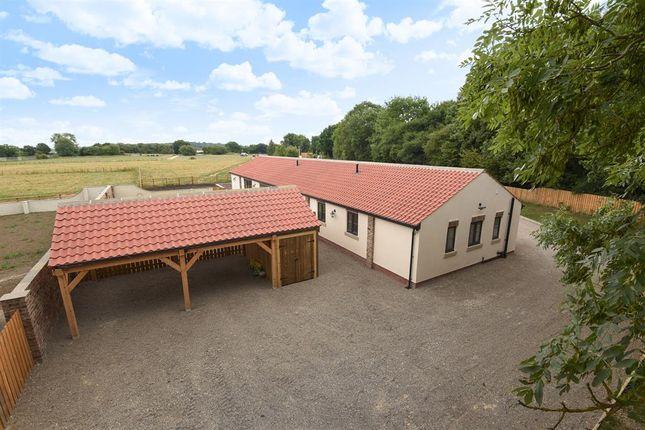 Thumbnail Detached bungalow for sale in Selby Lane, Acaster Malbis, York