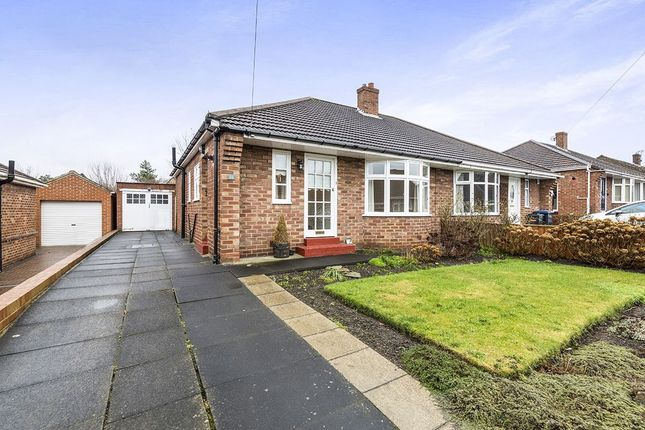 Thumbnail Bungalow to rent in Wantage Road, Durham