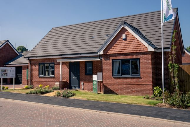 Thumbnail Property for sale in Short Way, Hinckley