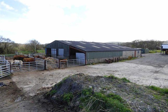 Thumbnail Farm for sale in Ffordd Llanfynydd, Treuddyn, Mold