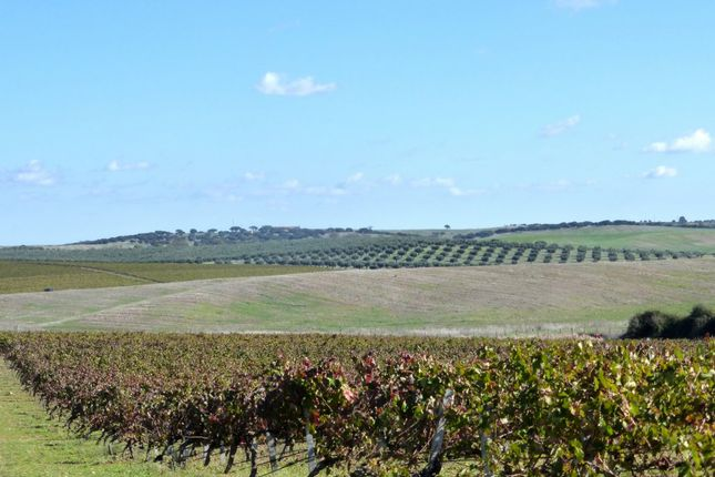 thumbnail farm for sale in farm with tourism wine hunting in alentejo portugal