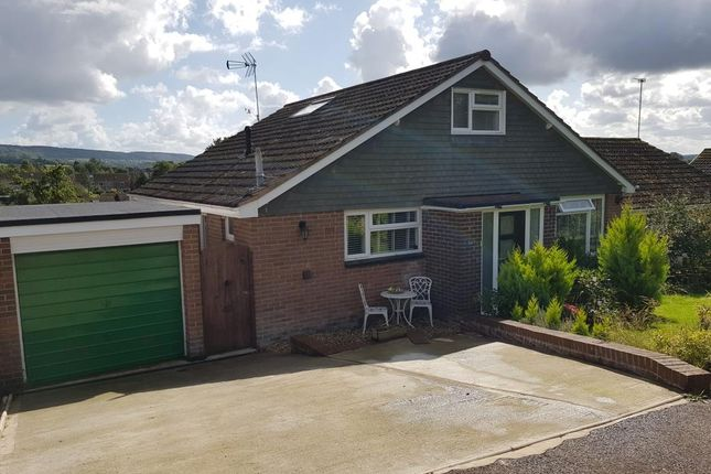Thumbnail Semi-detached bungalow for sale in Kennaway Road, Ottery St. Mary