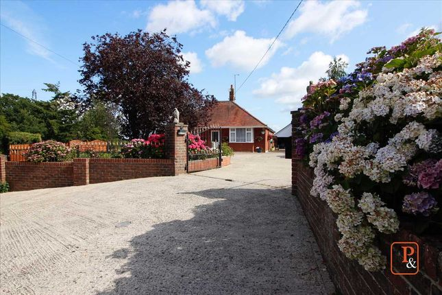 Thumbnail Detached bungalow for sale in Hintlesham, Ipswich