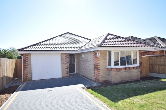 Thumbnail Detached bungalow for sale in Chamberlain Avenue, Walton On The Naze