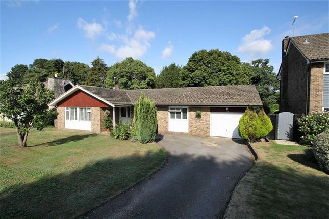 Thumbnail Detached bungalow for sale in Chiltley Way, Liphook, Hampshire