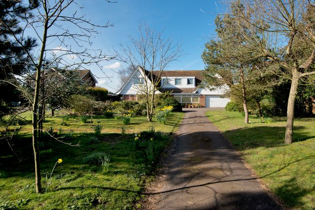 4 bed barn conversion to rent in Waldershare Avenue, Sandwich Bay, Sandwich CT13