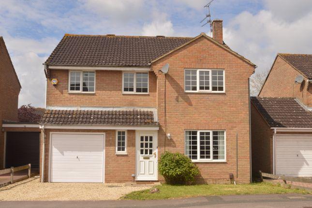 Thumbnail Detached house to rent in Liskeard Way, Freshbrook, Swindon