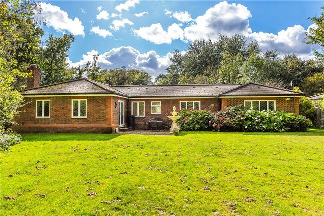 Thumbnail Bungalow for sale in Water Lane, South Godstone, Godstone, Surrey