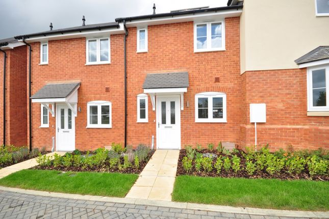 Thumbnail Terraced house to rent in Malvern Road, Maidstone