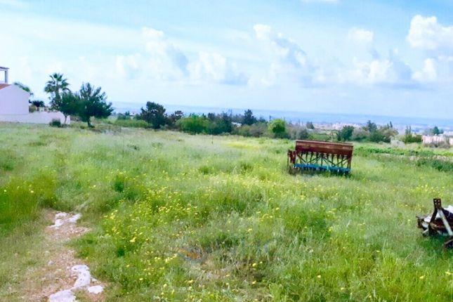 Thumbnail Land for sale in Anarita, Paphos, Cyprus