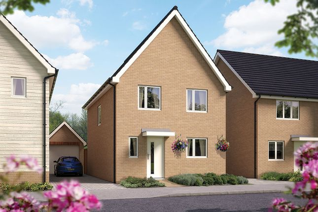 "Thumbnail Detached house for sale in ""The Salisbury"" at Toddington Lane, Wick, Littlehampton"