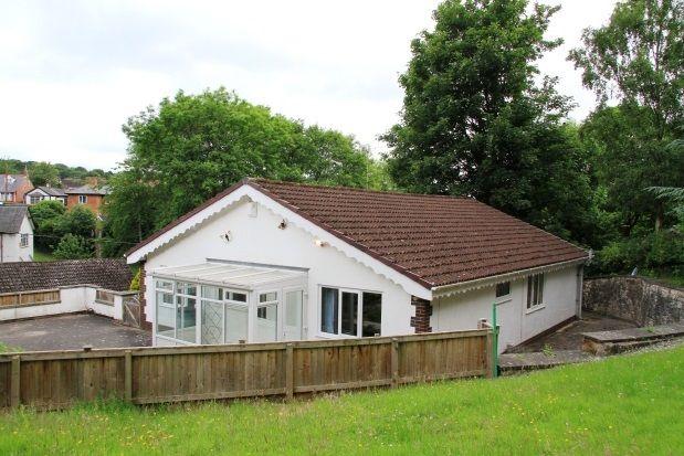 Thumbnail Bungalow to rent in Bryn Road, Flint
