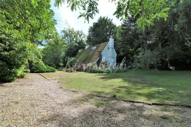 Thumbnail Detached house for sale in Stratford Road, Dedham, Colchester, Essex