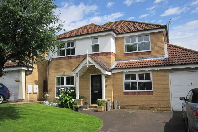Thumbnail Detached house to rent in Mustang Avenue, Whiteley, Fareham