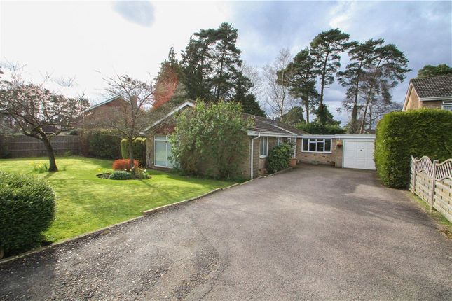 Thumbnail Detached house for sale in Copped Hall Drive, Camberley, Surrey
