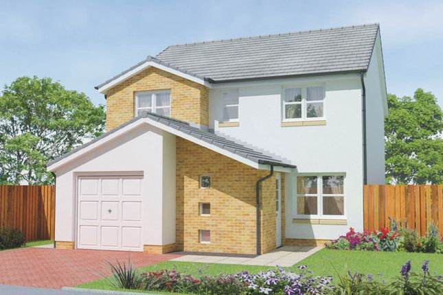 Thumbnail Detached house for sale in Anderson Street, Angus, Carnoustie