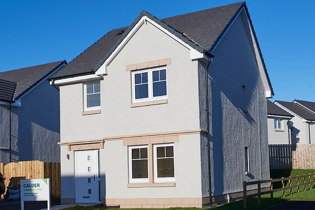 Thumbnail Detached house for sale in Matheson Drive, Fortrose
