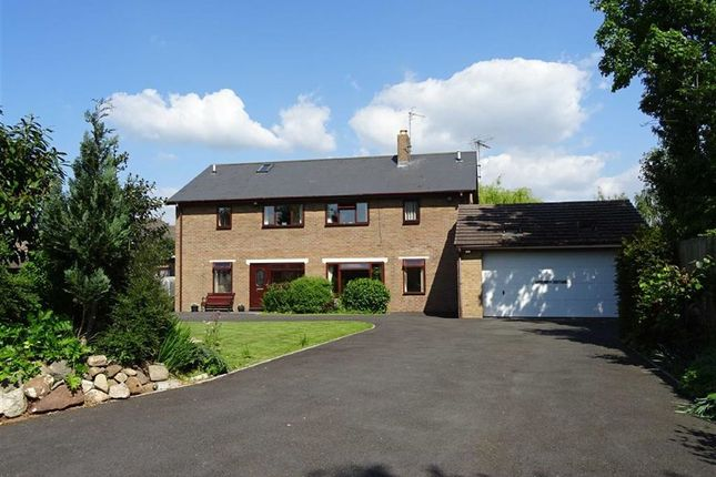 Thumbnail Detached house for sale in Lavender Cottage, Glentworth, Morda Road, Oswestry, Shropshire
