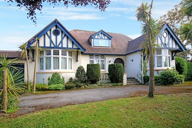 Thumbnail Detached house for sale in St Georges Crescent, Torquay