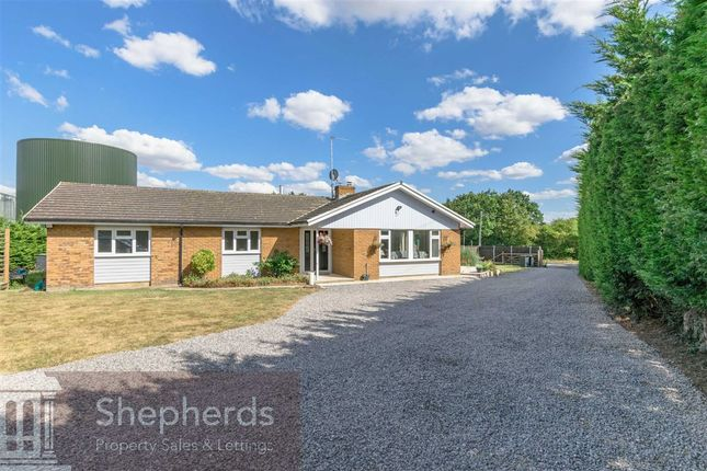 Thumbnail Detached bungalow for sale in Hoe Lane, Nazeing, Essex