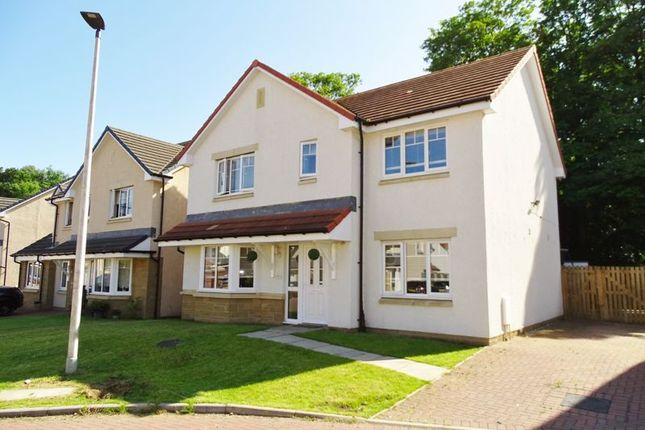 Thumbnail Detached house for sale in Tern Crescent, Alloa