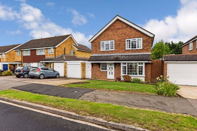 Thumbnail Detached house for sale in Home Close, Sharnbrook, Bedford