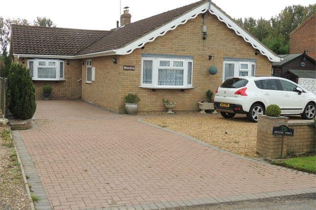 Thumbnail Detached bungalow for sale in Lime Kiln Road, West Dereham, King's Lynn