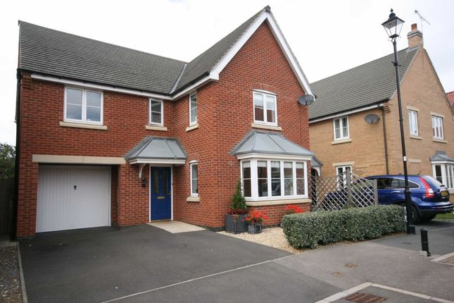 Thumbnail Detached house to rent in Lime Tree Avenue, Uppingham, Oakham