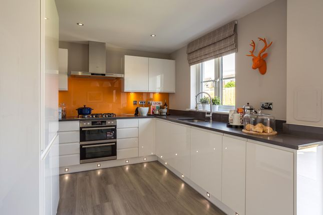 """Thumbnail Detached house for sale in """"Balmoral"""" at Mey Avenue, Inverness"""