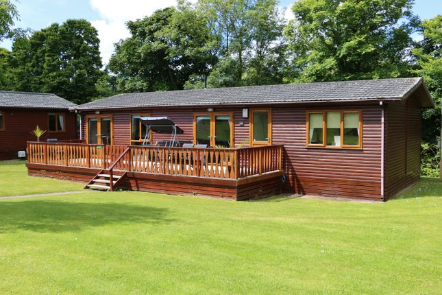 Thumbnail Lodge for sale in The Glade, St Minver