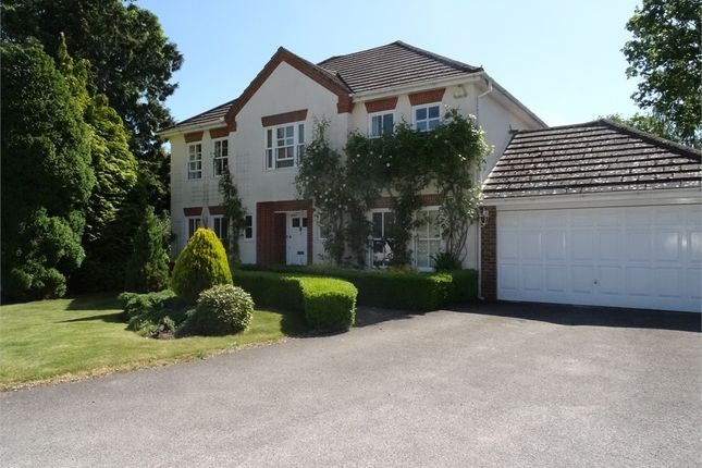 Thumbnail Detached house to rent in Nevelle Close, Binfield, Berkshire
