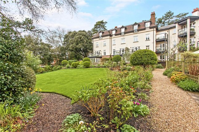 Thumbnail Maisonette for sale in King's Crescent, Winchester, Hampshire