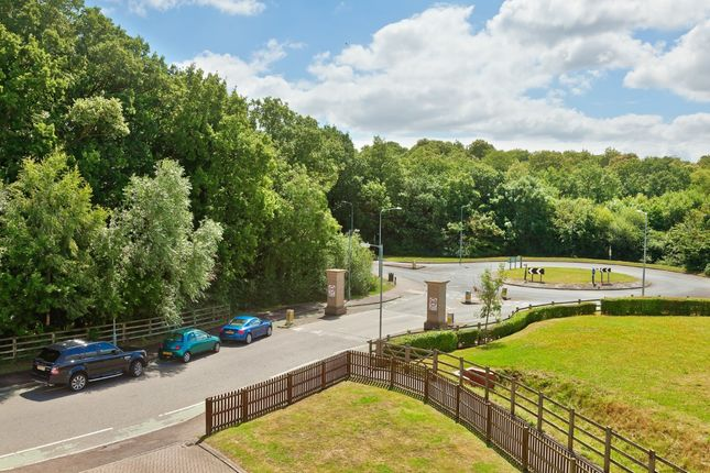 Thumbnail Property for sale in Highwoods, Colchester, Essex