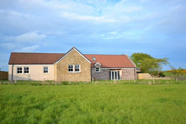 Thumbnail Detached bungalow for sale in Fossoway, Kinross