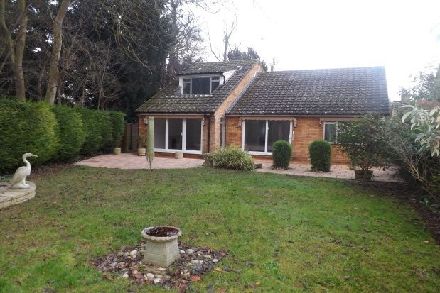 Thumbnail Detached bungalow to rent in Selwyn Close, Great Shelford, Cambridge