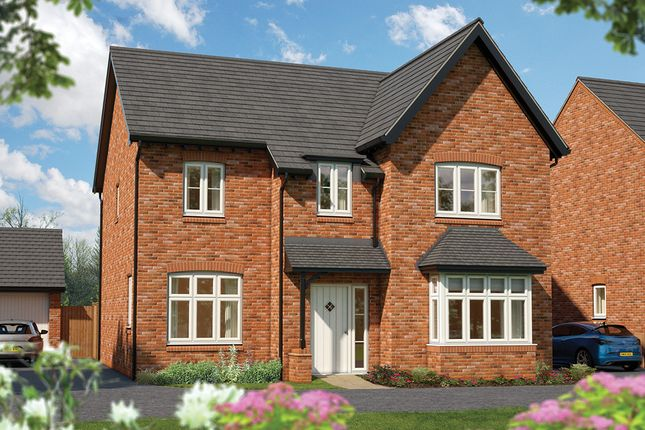 "Thumbnail Detached house for sale in ""The Birch"" at Southam Road, Radford Semele, Leamington Spa"
