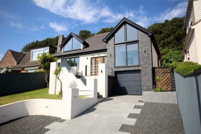 Thumbnail Detached house for sale in Hillside Drive, St Catherines Hill, Christchurch